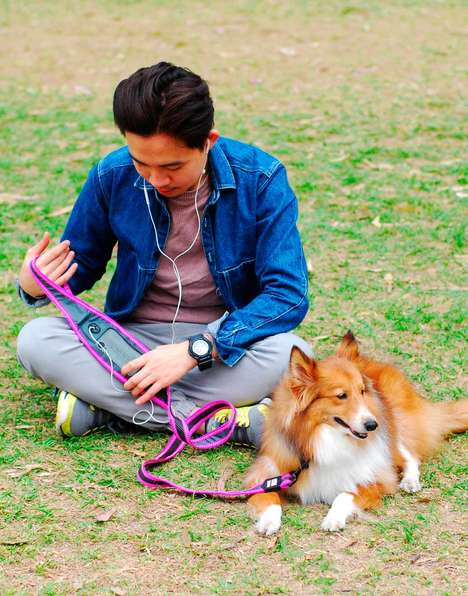 Runner-Friendly Dog Leashes