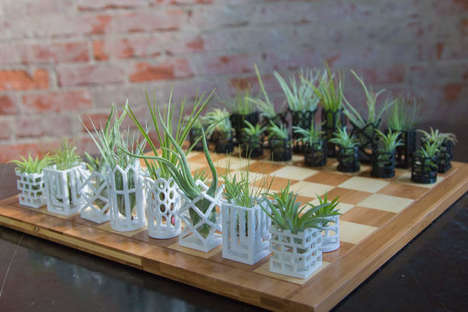 Air Plant Chess Sets