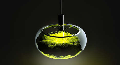 Calming Moss Light Fixtures
