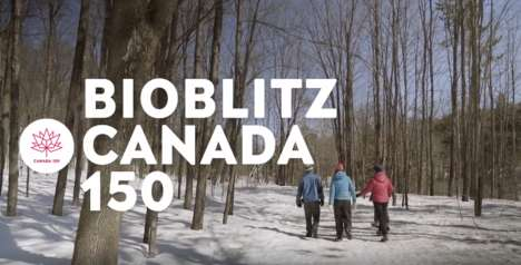 Environmental Photo Campaigns - The BioBlitz Canada 150 Project Helps Document Canada's Biodiversity