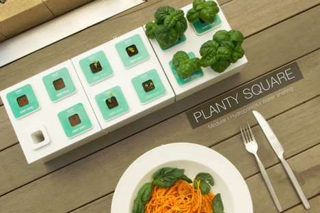 Planty Square is Able to Grow and Take Care of House Plants