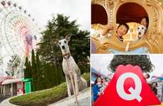 Dog-Friendly Amusement Parks