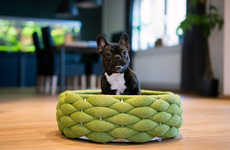Top 25 Pet Ideas in July