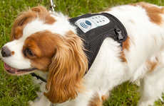 Canine Stress-Reducing Harnesses