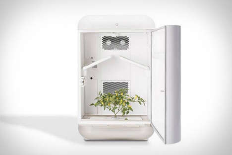 Automated Plant Growth Systems - The Seedo Hydroponic Growing System Enables Optimized Gardening