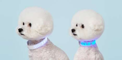 LED Dog Collars - Neopop Makes You Dog More Visible at Night