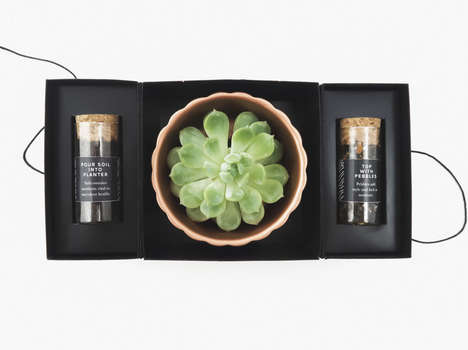 Conceptual Succulent Planting Kits - Succulence Allows Consumers to Decorate Their Own Succulents