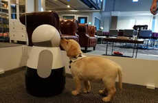 Pet Recognition Robots - The Kuri Robot Now Recognizes When Dogs and Cats are in View