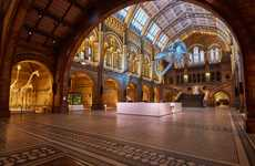 Space-Maximizing Museum Revamps - Casson Mann Recently Adjusted the Natural History Museum's Foyer
