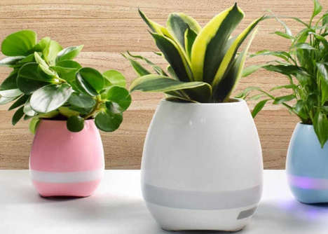 Touch-Encouraging Plant Pots