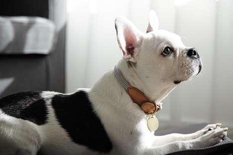Handmade Rope Canine Collars