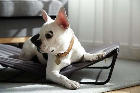 Comfy Canine-Soothing Hammocks - The Cody and Bella 'My Territory' Dog Hammocks Enhance Comfort
