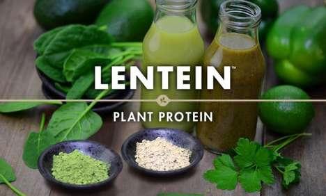 Protein-Rich Lentil Powders