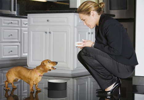 Self-Cooling Pet Bowls - Magisso's Water Bowls for Pets Keep Drinks Chilled for Hours