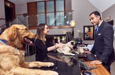 Dog-Friendly Travel Packages - The Mercure Hotels 'Happy Tails' Package Treats Pooches to Pampering