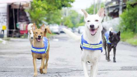 Dog-Affixed Smart Vests - These Smart Vests are Turning Stray Dogs into a Neighborhood Watch