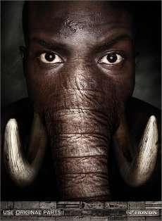 27 Elephant Innovations