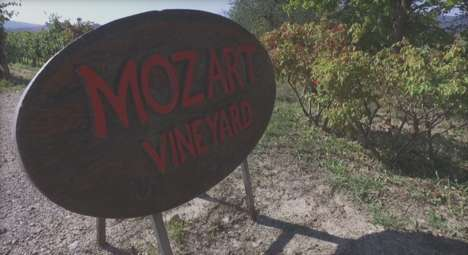 Sonically Enhanced Wines - Mozart Vineyard Inserts Music into the Wine-Making Process