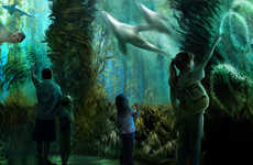 Fishless Aquarium Attractions