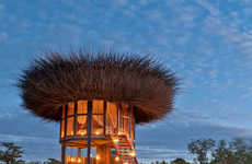 Elevated Bird Nest Retreats