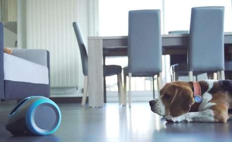 Interactive Canine Robots - The Camtoy 'Laïka' Keeps Pets Entertained While You're Away