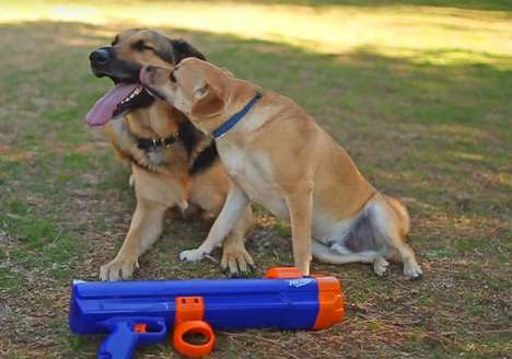 Canine Playtime Toy Guns - The NERF Dog Ball Launcher Projects Toys 50 Feet in the Air