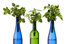 Hydroponic Wine Bottle Gardens