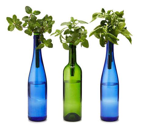Hydroponic Wine Bottle Gardens