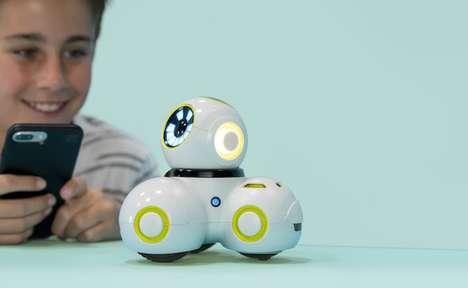 Programmable Education Robots