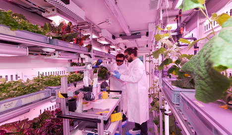 Space-Focused Indoor Farms - The EDEN ISS Project is Developing Safe Food Production in Space