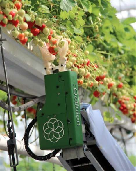 Berry-Picking Robots - Octinion's 3D-Printed Robot Picks a Berry Every Three Seconds
