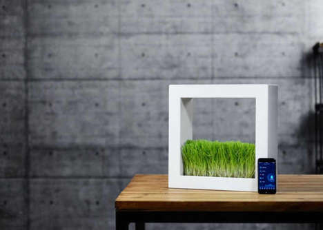 Self-Sufficient Smart Gardens