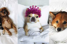 Pet Influencer Linen Campaigns
