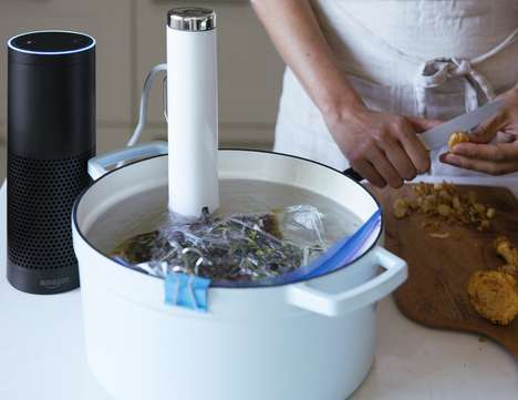 Voice-Controlled Sous Vide Tools