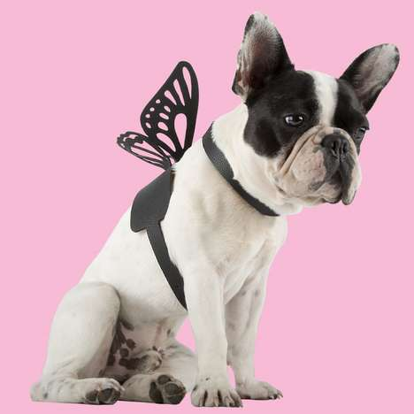 Stylist-Created Pet Accessories - Christian Cowan and Moshiqa Created Accessories for Pets