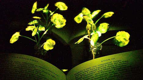 Man-Made Luminescent Plants