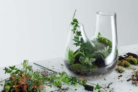 Customized Home Terrariums