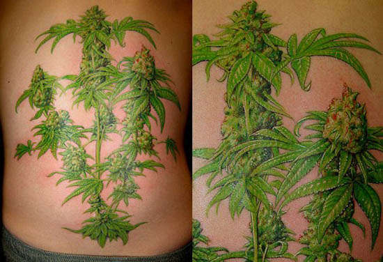 Marijuana Tattoos