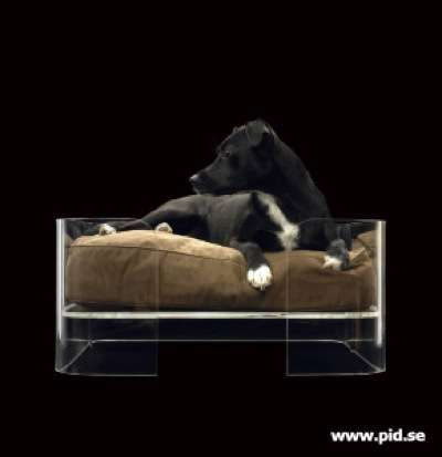 Clear-Walled Pet Beds