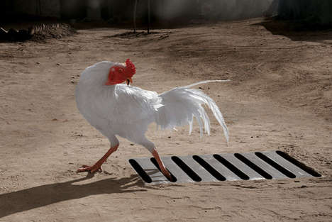 Persona Toothbrushes Help Chickens Get Unstuck From Sewers (and Te