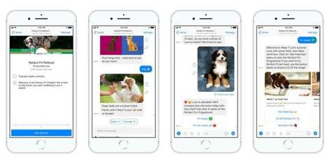 Tailored Pet Care Chatbots