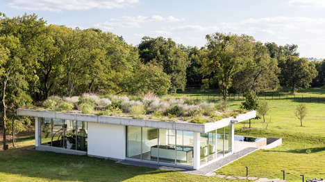 Green Roof Pool Houses