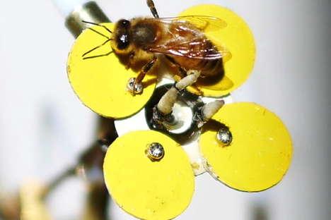 Robotic Bee Attractors