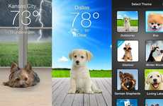 Puppy-Presenting Weather Apps - 'Weather Puppy' Keeps People Happy When They Check the Forecast
