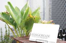 In-Cafe Brunch Pop-Ups - 'Asagohan' is a Monthly Event That Explores Morning Coffee Culture