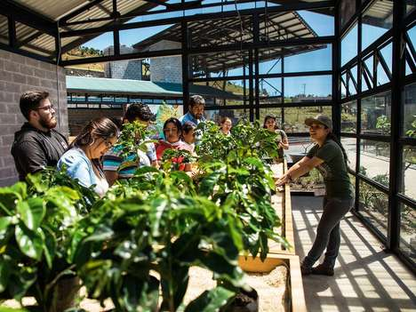 Coffee-Farming Centers - The Hacienda Alsacia Visitor Center Offers Starbucks Fans a New Perspective