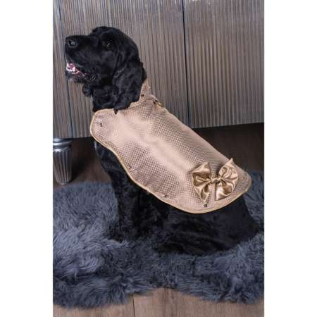 Extravagant Gold Dog Jackets - Doggy Armour Created the World's Most Expensive Dog Jacket
