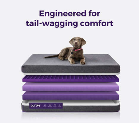 Antimicrobial Pet Mattresses - The Hypoallergenic Purple Pet Bed Resists Odors and Moisture