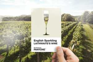 Sparkling Wine Color Swatches