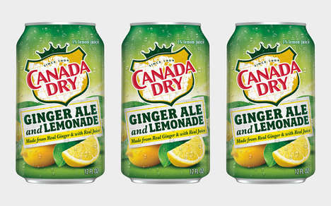 Citrus-Infused Ginger Sodas